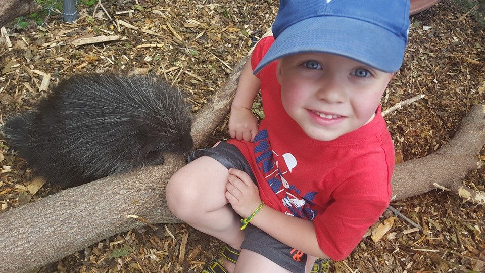 bryce and Vinny the porcupine