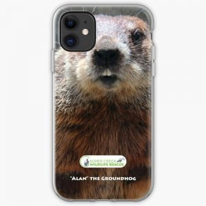 Alan Phone Case