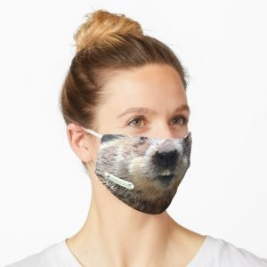 Alan Face Mask